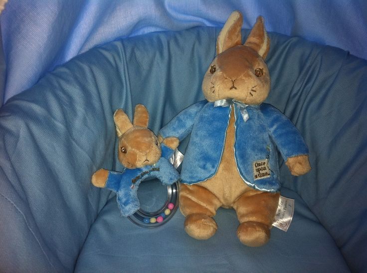 63 best Peter Rabbit images on Pinterest | Rabbit, Beatrix potter ...