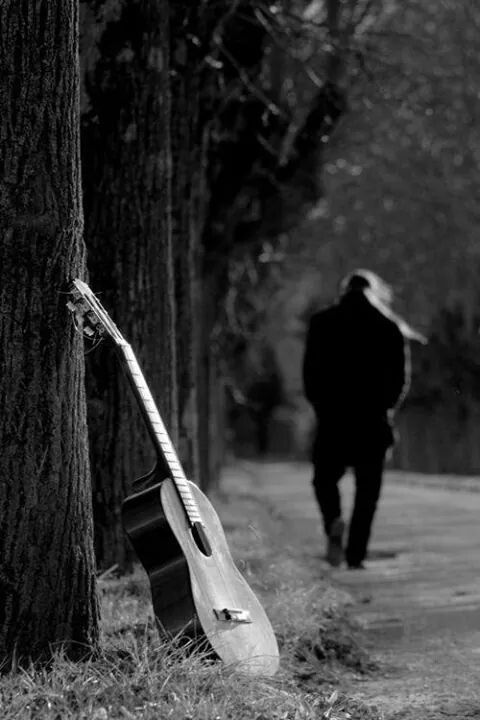 Guitar leaning on a tree, b&w