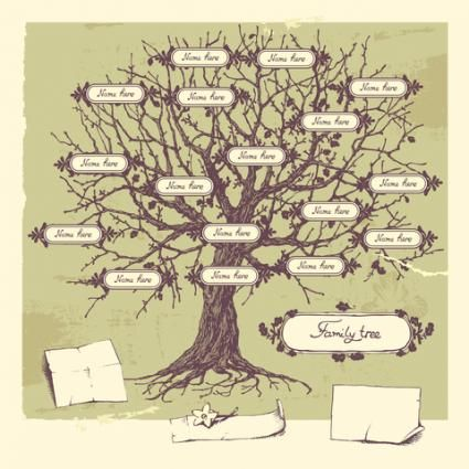 One example of a family tree illustration; copyright Liliya Shlapak at Dreamstime.com