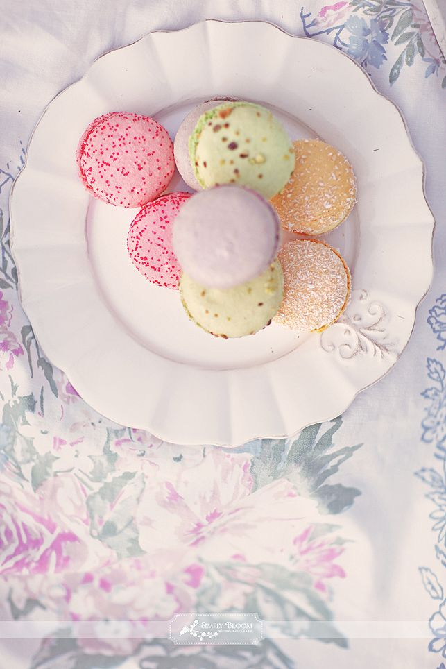 gorgeous french macarons