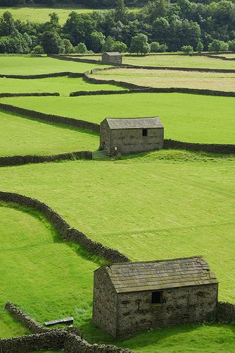 Stone Barns in Swaledale, Yorkshire, England