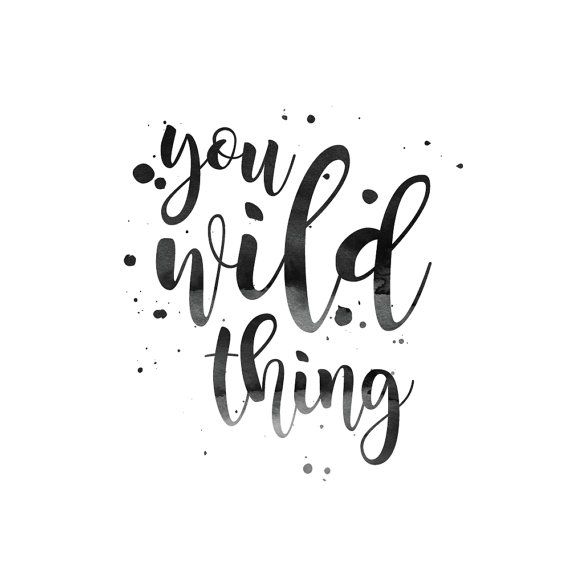 Ginny and Jane   You Wild Thing Print   Inspirational Wall Art   Hand Lettering