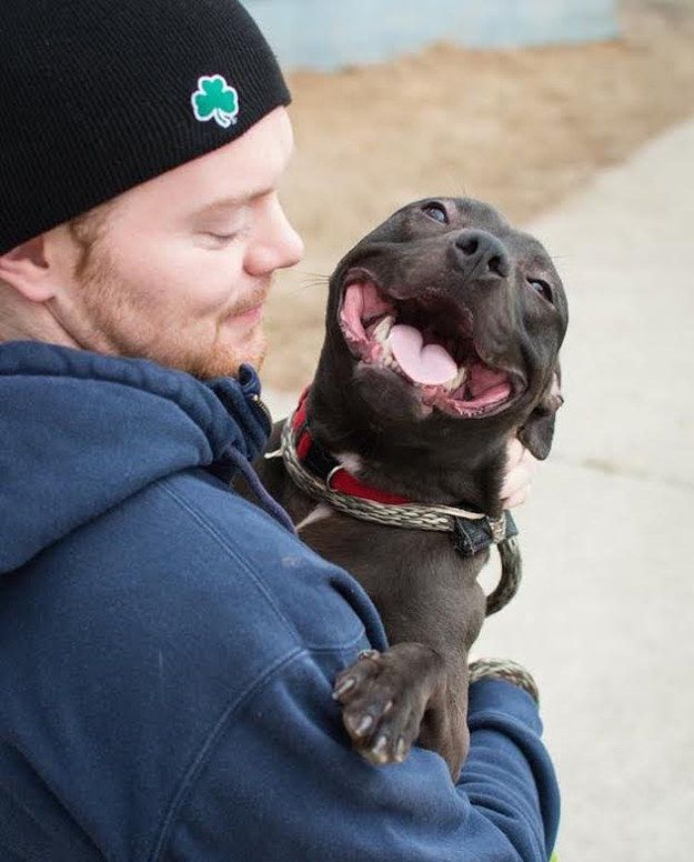 So we love it when people bring our ex-residents in for a visit. | 22 Things Animal Shelter Workers Will Never Tell You