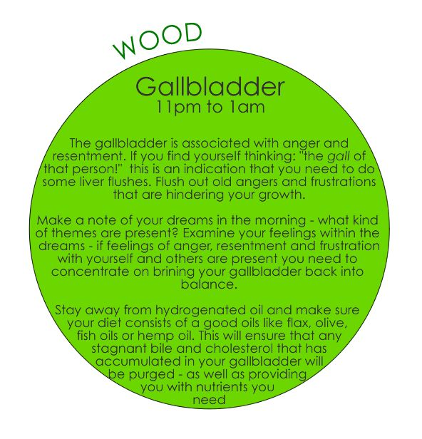 TCM - 24-hour Organ Qi Cycle  Galbladder 11pm - 1am