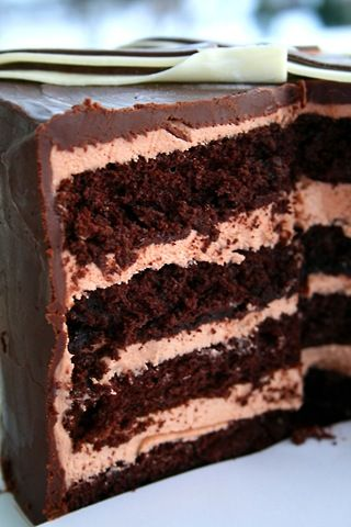 Spiced Chocolate Torte Wrapped In Chocolate Ribbons Recipes ...