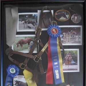 Horse shadow box, make each box separate for each horse and add pics & ribbons