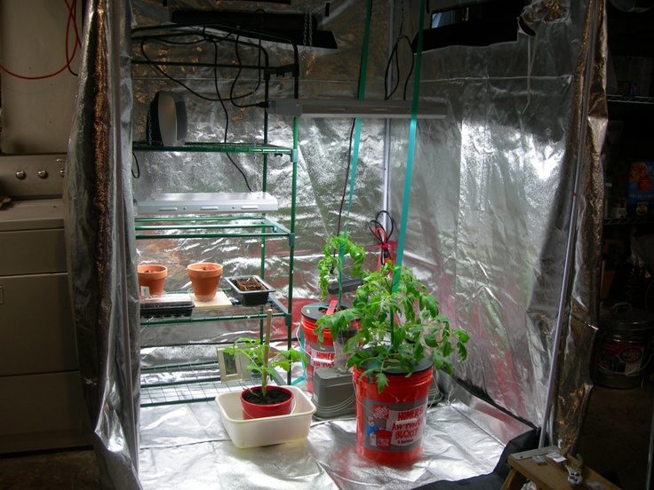 Awesome How to Build A Grow Room In A Basement