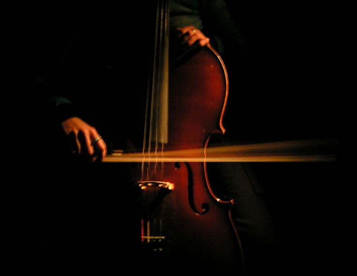 12 best images about cello on pinterest black