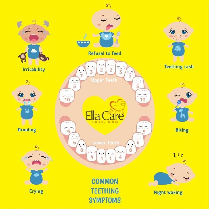 The 25+ best Baby teething chart ideas on Pinterest Baby - baby teeth chart