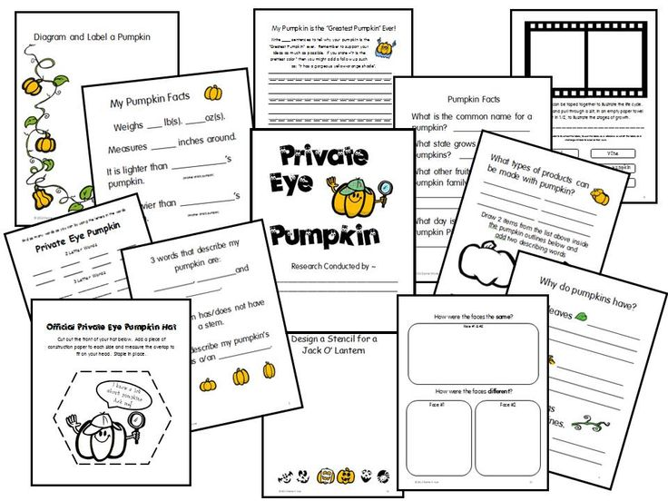 """Private Eye Pumpkin  The Common Core Standards, along with 21st Century Skills require that children are more active in their own learning. Children are naturally inquisitive and educators should grasp that opportunity for learning by developing """"short research projects that build knowledge about a topic"""". This primary research packet was developed to aid children in """"learning to learn""""."""