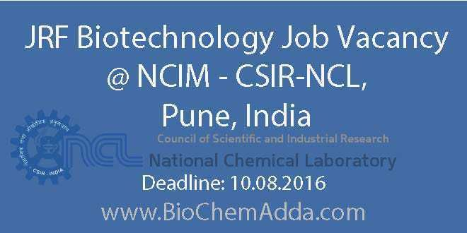 JRF Biotechnology Job Vacancy @ NCIM – CSIR-NCL, Pune
