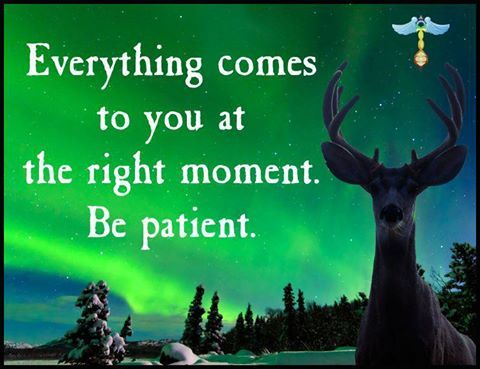 Be Patient- Everything comes in Time