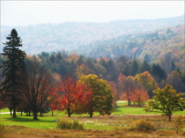An autumn dreamscape, via Flickr.