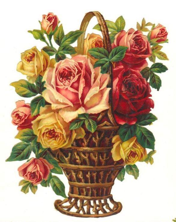 Картинки корзинки с цветами нарисованные, картинки девушки
