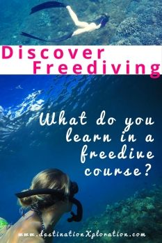 Do you remember as kid it was super cool to cross the swimming pool underwater holding your breath? Guess what, it still is! And it's called freediving. #1 tip: take a freedive course! #freedive #mermaid #indonesia #freedivebeginner #freedivecourse #apnea