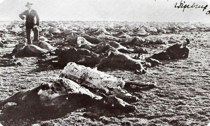 Scorched Earth Photos