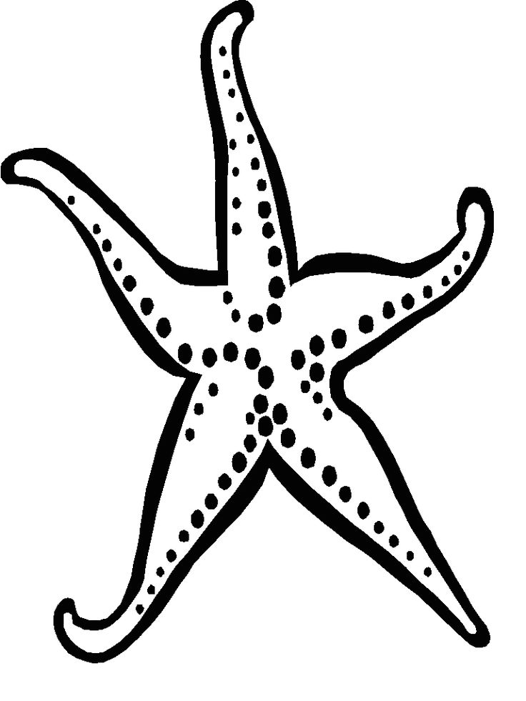 starfish template birthday party under the sea pinterest starfish starfish template and