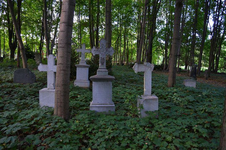 1280px-Old_cemetery_in_Küstrin-Kietz_217.JPG (1280×853)