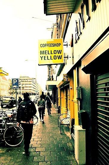 Resultado de imagem para mellow yellow amsterdam -proximo de escola