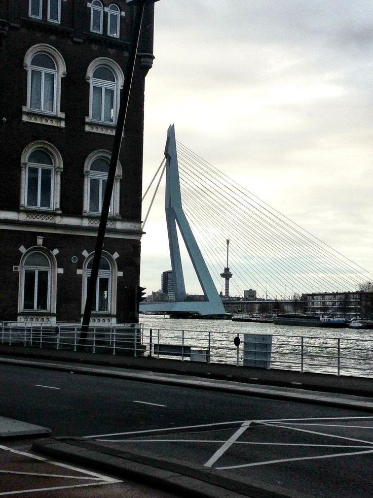 Rotterdam old and new