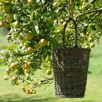 Wicker Harvest Basket...if you are lucky to have fruit trees.....or deep enough to be a great floor container for dried flowers or empty to hold small toys.