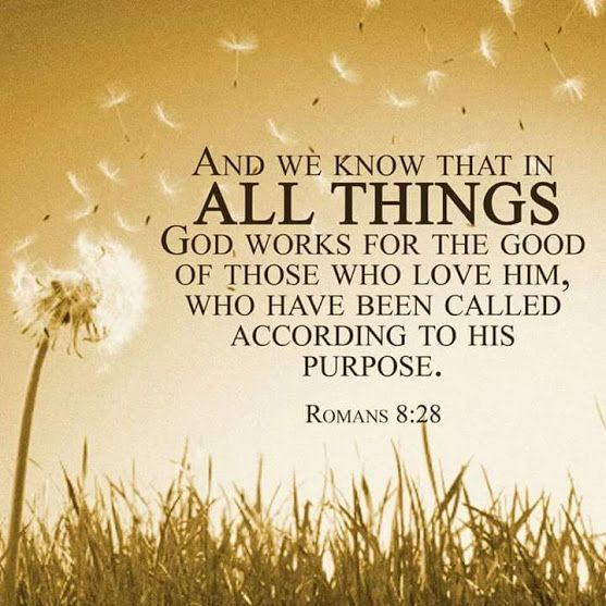 Knowing Jesus - Community - Google+. No.9  of 31 Verses LCH