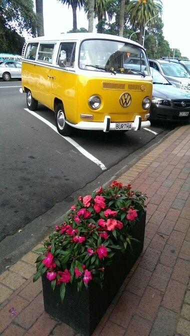 Devonport New Zealand Cars Pinterest Vw Bus