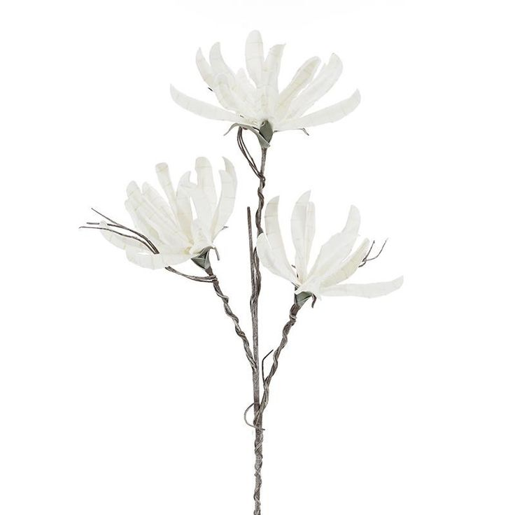 FLOWER/BRANCH IN WHITE COLOR H:104 - Flowers - Plants - DECORATIONS - inart