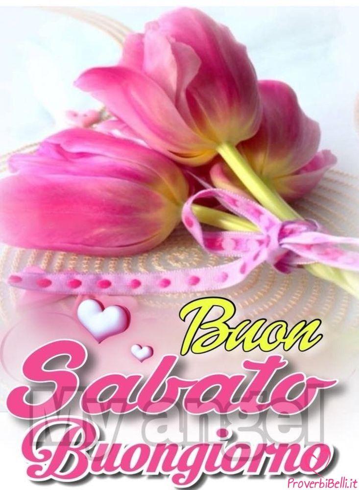 Buongiorno sabato belle immagini per whatsapp for Foto belle di buongiorno