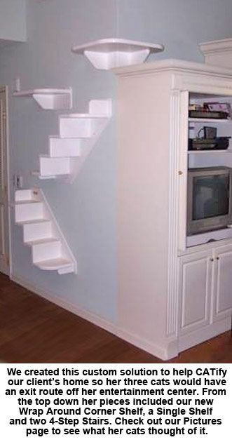 Shelves For Cats   Google Search