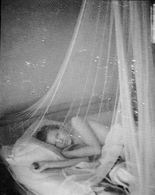 : Beds Covers, Kate Moss Primro, Moss Primro Hill, Dreams Catcher, Models Katemoss, English Models, Moss Editorial, Sweet Dreams, Canopies