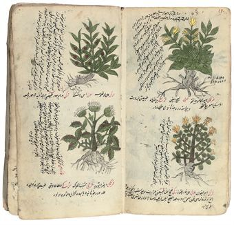 My dentist has a book in her family of herbal remedies that dates back to the 1700s. I like to think it looks like this.