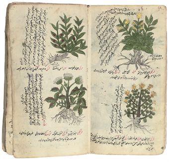 Ottoman Empire 18th century Herbal Manuscript