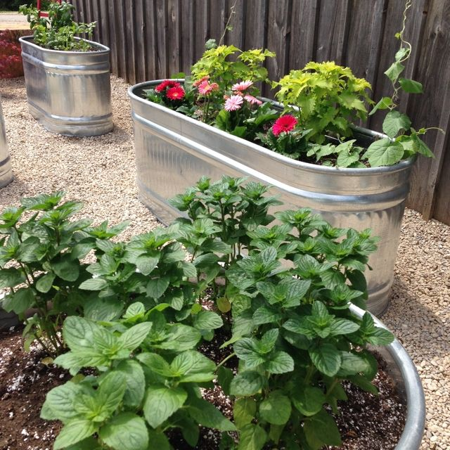 Using Water Troughs for the Raised herb Gardens at BannockBurn 1878… CynthiaWeber.com