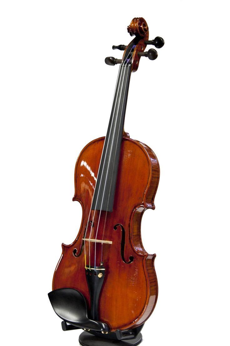 Free photo: 乐器,音乐,玩,爱好