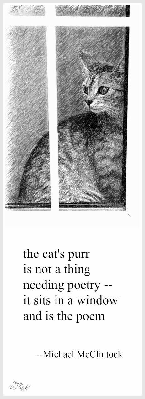 Tanka poem: the cat's purr -- by Michael McClintock, drawing by Karen McClintock.