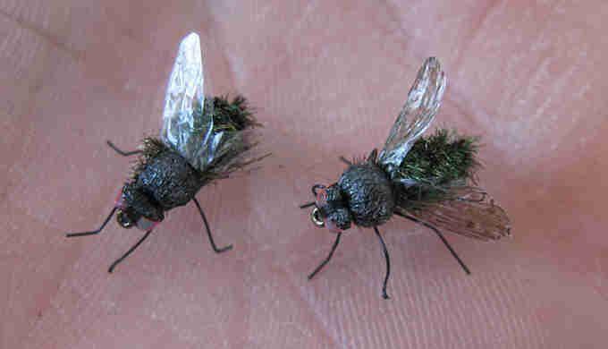 Vous en avez assez des mouches ? À l'extérieur c'est déjà pénible, mais à l'intérieur c'est pire. Et on ne demande qu'à s'en débarrasser au plus vite. Petites mouch...