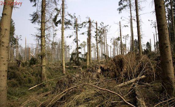 Páteční bouře Doris po sobě zanechala spoušť. Její řádění stálo 16 milionů