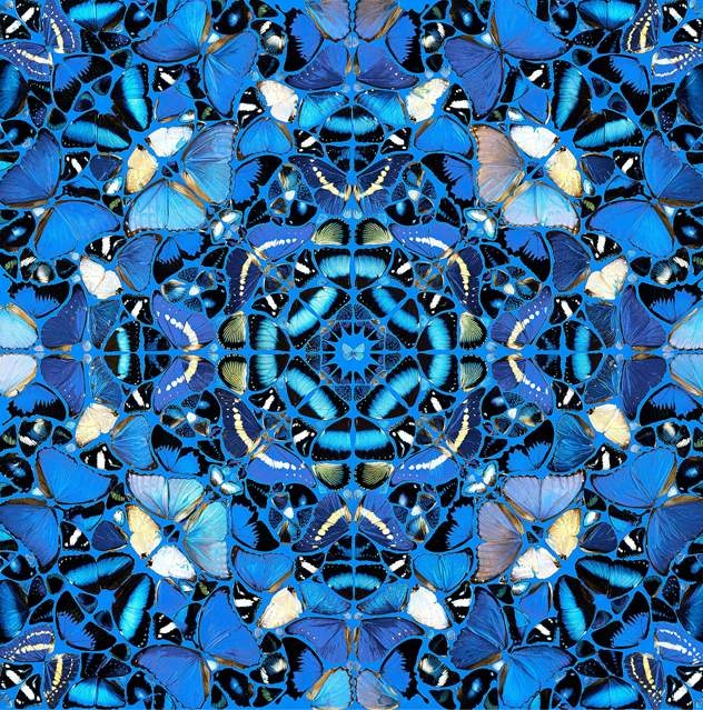 An intricate fractal of gorgeous blue butterflies. by Damien Hirst.                                                                                                                                                      More