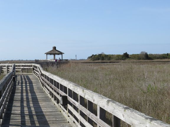 The Salt Marsh Boardwalk and Waterway Overlook provides an excellent vantage point for viewing the Yacht Basin and Intracoastal Waterway.  Southport, NC.