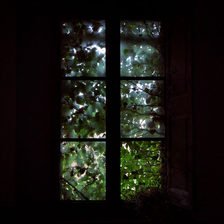 #abandoned #window