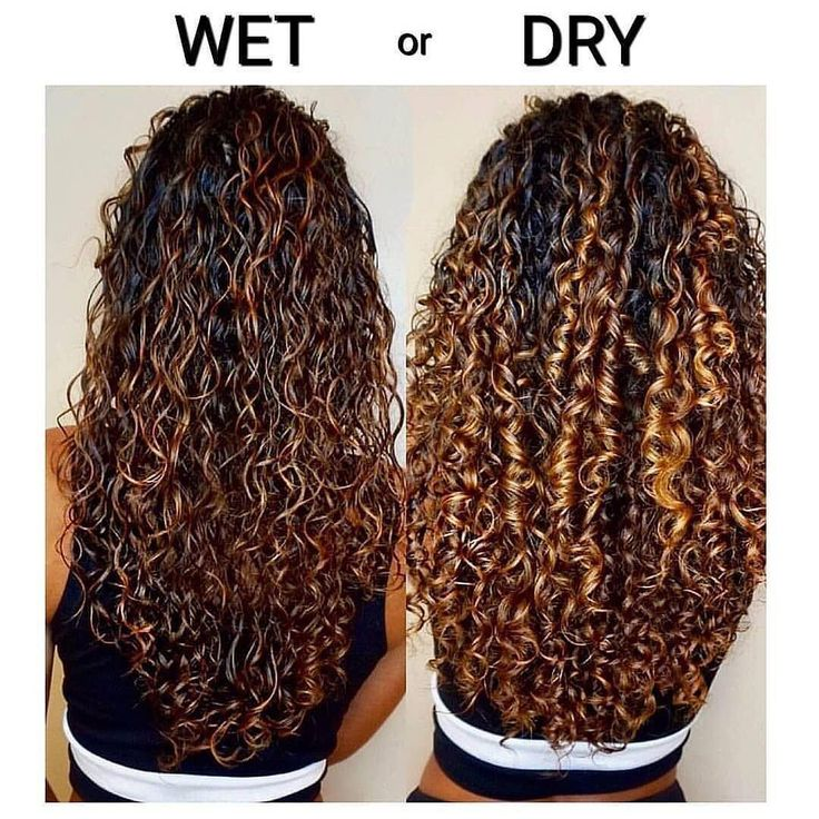 Wet To Dry😱😱😱 Segbeauty Curly Hair Diffuser Can Help You