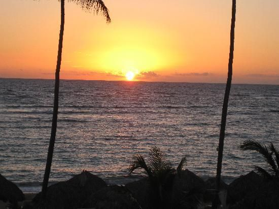 Majestic Elegance Punta Cana - UPDATED 2017 Prices & Resort (All-Inclusive) Reviews (Bavaro, Dominican Republic) - TripAdvisor