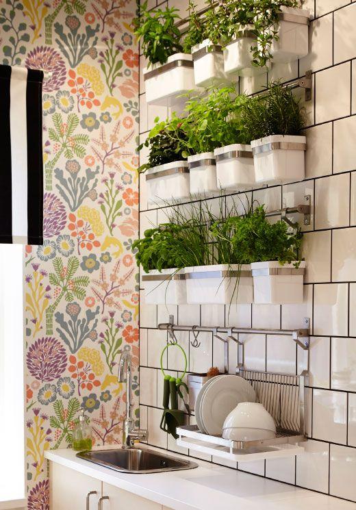 GRUNDTAL Stangen aus Edelstahl an der Wand mit Küchenkräutern und GRUNDTAL Abtropfgestell