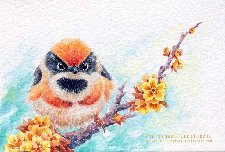 """Media: watercolor on Saunders Waterford watercolor paper (300g) Size: 4""""x6"""" Bird Name: Red-Headed Tit or Black-Throated Tit Binomial Name: Aegithalos Concinnus Others in the Series: &nb..."""