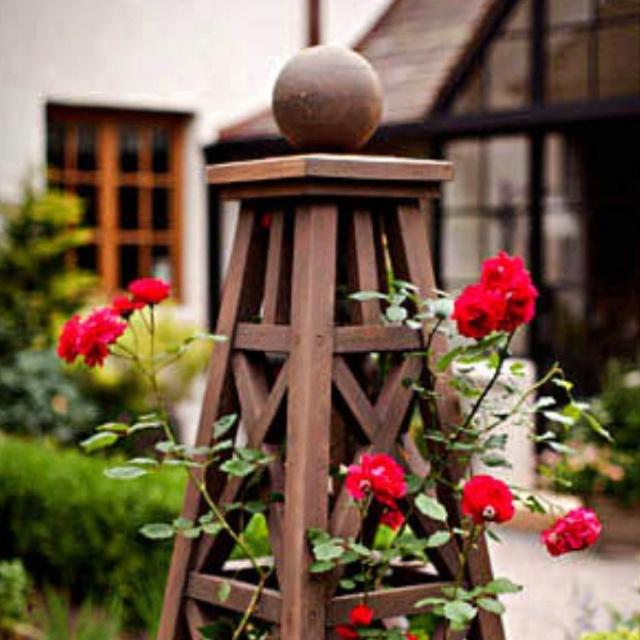 1000+ ideas about Rose Trellis on Pinterest | Trellis, Gardening and ...