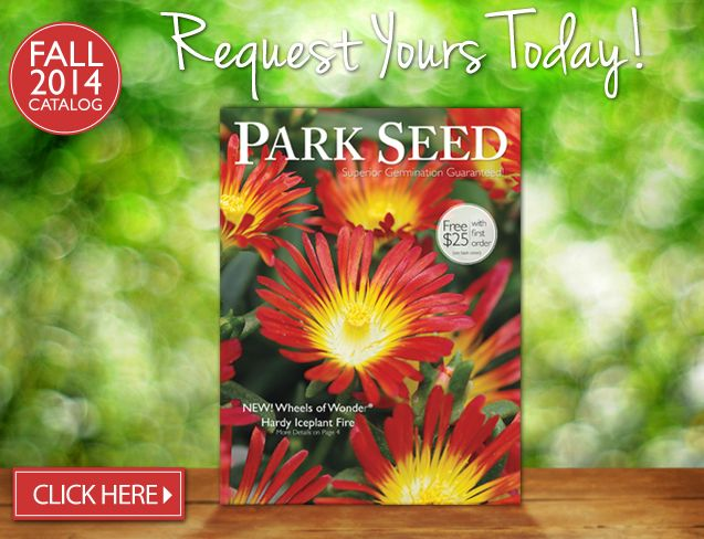 Park Seed Vegetable Seeds Flower Plants Bulbs Trees And Gardening