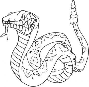 rattle snake coloring pages