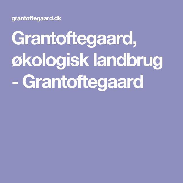 Grantoftegaard, økologisk landbrug - Grantoftegaard