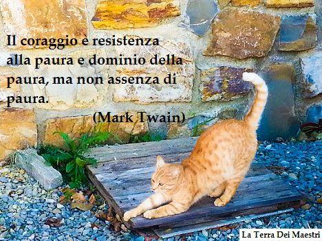 La paura è fondamentale nella vita, fa parte dell'istinto di sopravvivenza. Non attraversiamo la strada con il rosso per paura di venire investiti; non tocchiamo il fuoco per timore di bruciarci, non nuotiamo troppo a largo per non affogare. Insomma, la paura di per sé è uno stato d'animo utile, senza il quale non... (Continua => http://zazzo85.altervista.org/blog/?p=766 )